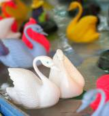 Joust of swans that float on the water — Stock Photo