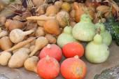 Muchas calabazas verdes y naranjas a la venta en el mercado — Foto de Stock