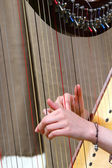 Hands of woman strumming the strings of an  harp — Stock Photo