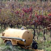 Water tank to irrigate the vines and the grapes during the summe — Stock Photo