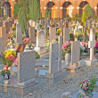 Many gravestones and tombs in the cemetery with many flowers — Stock Photo #57514779