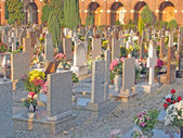 Many gravestones and tombs in the cemetery with many flowers — Stock Photo
