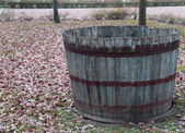Wooden tub to pick the grapes during the harvest and wine making — Stock Photo