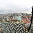 View of the city from the Bell Tower of the Cathedral of St. Ste — Stock Photo #60980083