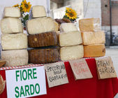 Sardinian origin cheese for sale in the local market — Stock Photo