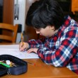 Boy does homework at his home — Stock Photo #63287465