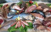 Great white sea bream many saltwater fish in the italian restaur — Stock Photo