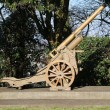 Old gun of World War I in open-air museum — Stock Photo #67869417