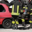 Постер, плакат: Firefighters in action during a car accident