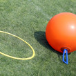 Ball to make the jumps and a circle for hula hoop — Stock Photo #74408839