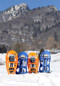 Four snowshoes in mountains in winter — Stock Photo