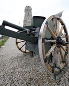 Cannon of the first world war and the ossuary — Fotografia Stock