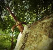 Excalibur the famous sword in the stone of king Arthur in the fo — Stock Photo