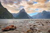 Milford Sound & Branch — Stock Photo
