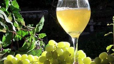 Sparkling Wine — Stock Video