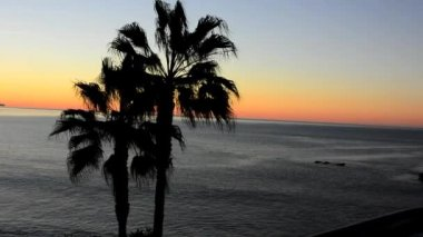 Morning At Laguna Beach — Stockvideo