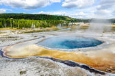 Scenic view of Crested pool in Yellowstone NP — Stock Photo