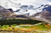 Landscape view of Columbia glacier in Jasper NP, Canada — Foto Stock