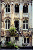 Old weathered wall with vintage windows, Belgium — Stock Photo