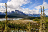 Landscape view of river and montains, Rocky Mountains, Canada — Stock Photo