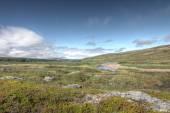 Paesaggio di tundra — Foto Stock