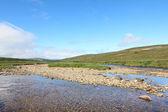 Tundra-Landschaft — Stockfoto