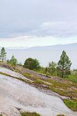 Parco norvegese — Foto Stock