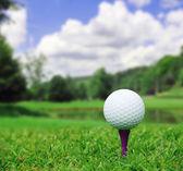 мяч для гольфа на поле — Стоковое фото