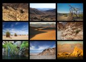 Death Valley collage — Stock Photo