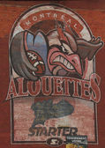 Alouettes mural — 图库照片