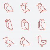 Bird icons, thin line style, flat design — Stock Vector