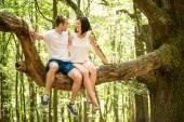 Love - date on tree — Stock Photo