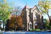 Church of the Immaculate Conception of Blessed Virgin Mary — Stock Photo