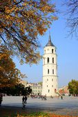 Walking in Cathedral square at autumn in Vilnius city on October 12, 2014 — Stock Photo