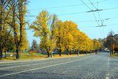 Autumn trees in the Vilnius city centre — Stockfoto