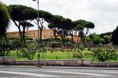 View of ruins in Rome city on May 31, 2014 — Stockfoto