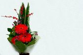 Bouquet with Daisy flower red gerbera and leaves — Stock Photo