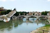 Του ποταμού Τίβερη και θέα στην πόλη Ρώμη στις Μαΐου 30, 2014 — Φωτογραφία Αρχείου