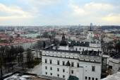 Vilnius Winter Panorama From Gediminas Castle Tower — ストック写真