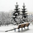 Fresh snow cover, at winter time in Vilnius city — Stock Photo #67703463
