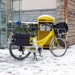 Postal delivery in bike, winter under the snow — Stock Photo #51899787