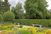 Public garden in summer, zone of tranquillity  and meditation — Stock Photo