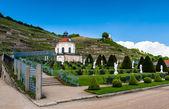 Wackerbarth Castle yard and vinery — Stock Photo
