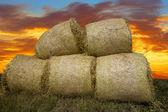 Heap of hay bales — Stock Photo