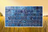 Solar cell on wheat field — Stock Photo