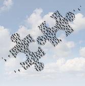 Flying Birds Puzzle — Stock Photo