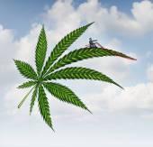 Marijuana Concept — Stock Photo