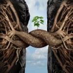 Unity Growth Concept — Stock Photo #65078819