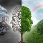 Environment Change — Stock Photo #72511999