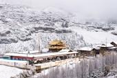 Śnieżny krajobraz — Zdjęcie stockowe